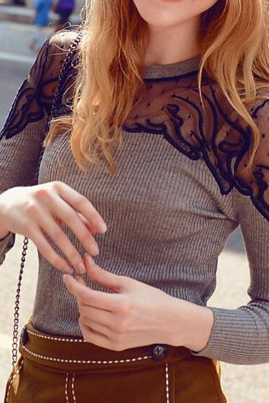 Crew Neck Upper Lace Mesh Long-sleeved Sweater Blouse